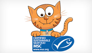 Marine Stewardship Council – Fish & Kids campaign – Character Design