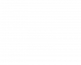 The Black Pin – branding, Illustration and website for homewares brand